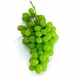Сорт винограда «Кишмиш лучистый». Преимущества и недостатки