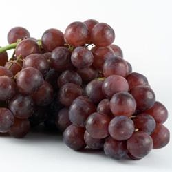 Чем подкормить виноград весной