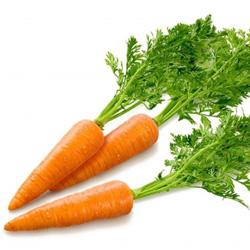 Технология выращивания и ухода за морковью