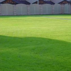 Как самостоятельно подготовить почву под газон