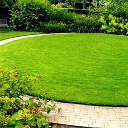 Какой триммер для газона выбрать?