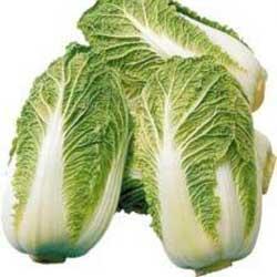 Выращивание декоративной капусты доступно всем