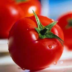Советы по выращиванию помидоров черри