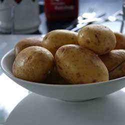 Опыт выращивания картофеля под соломой