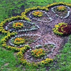 Как сделать газон самостоятельно?
