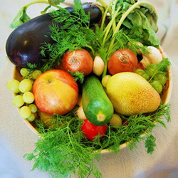 Выращивание огурцов: посадка, уход и агротехника