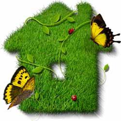 Цветоводство и озеленение