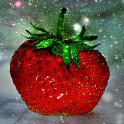 Сорт клубники гигантелла: преимущества и недостатки